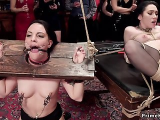 Babes in selection bondages sex orgy having sex