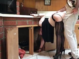 COUGAR suffer from close to the kitchen drilled by neighbor (pin)